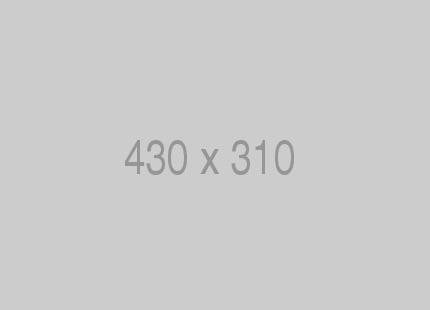 Pin 430x310