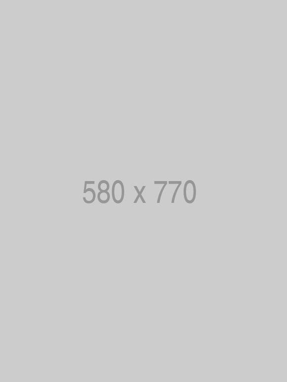Pin 580x770